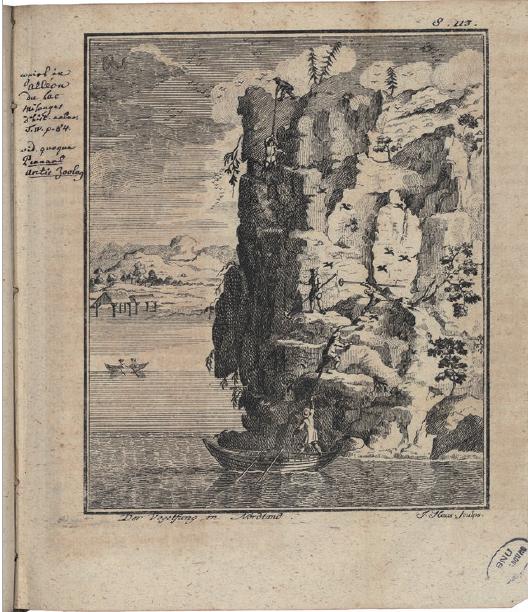 Figure 2 - Gravure extraite du second volume de l'Histoire           naturelle de la Norvège (édition de Copenhague, 1754), représentant           une scène de capture d'oiseaux (coll. BNU).